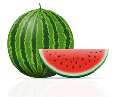 Watermelon Free Vector Art.