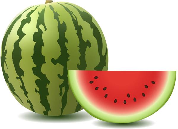 2078 Watermelon free clipart.
