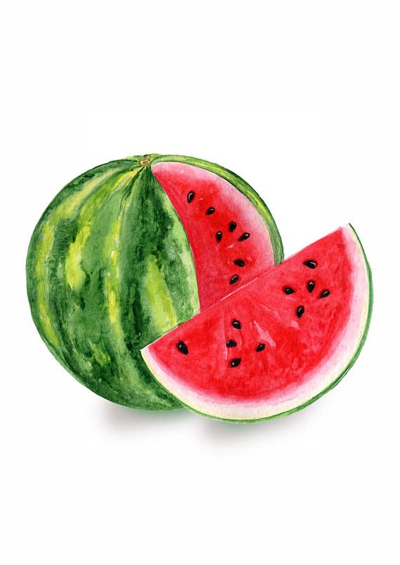 Watermelon Watercolor Clipart, Summer Clip Art, Sublimation.