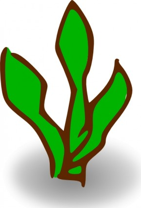 Water plant clipart.