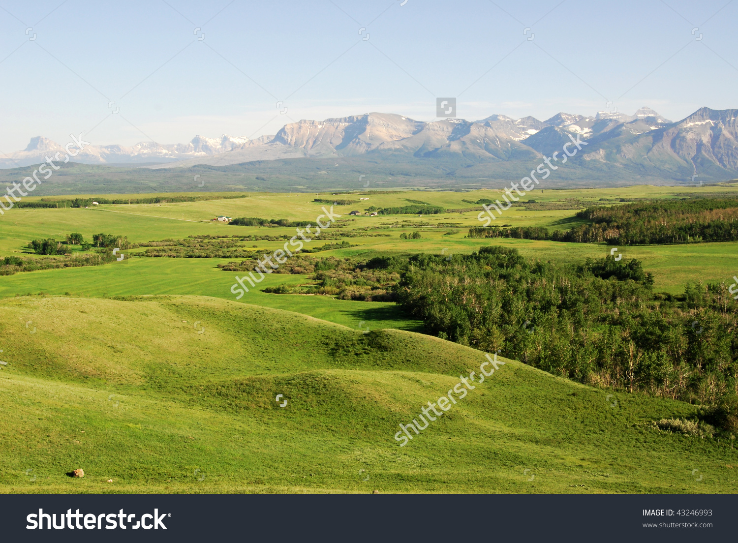 Summer View Of Meadows, Forests And Mountains In Waterton Lakes.