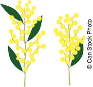 Wattle Illustrations and Stock Art. 1,842 Wattle illustration.