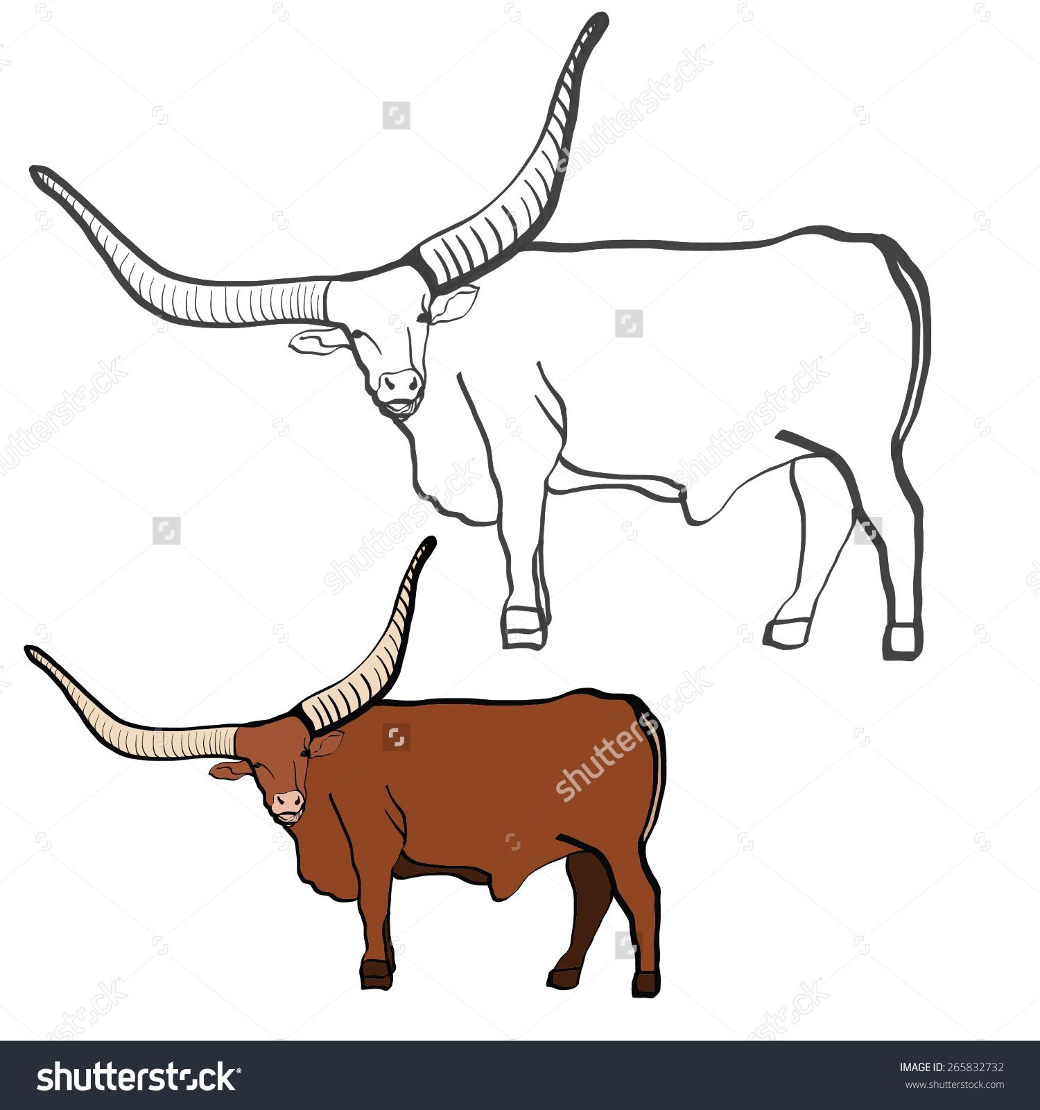 Bull Large Horns Tour Watusi Bull Stock Vector 265832732.