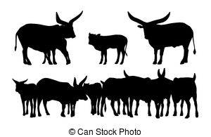 Watusi Illustrations and Stock Art. 13 Watusi illustration.