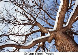Stock Photography of snow texture, winter scene, snow background.
