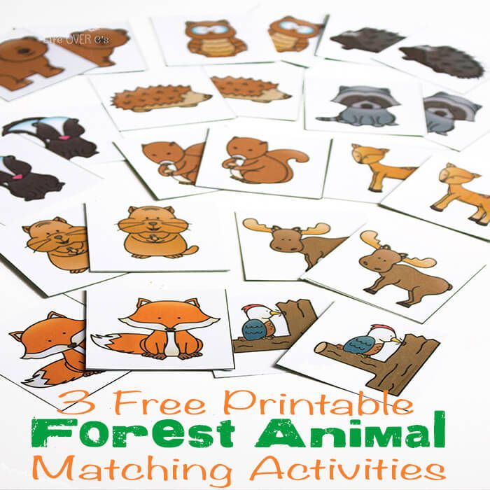 1000+ ideas about Forest Crafts on Pinterest.