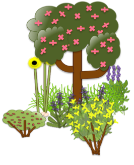 Food Forests or Forest Gardens.