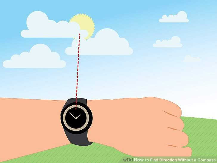 5 Ways to Find Direction Without a Compass.