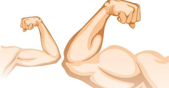 Muscles clipart weak muscle, Picture #2992479 muscles.