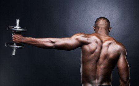 Ultimate Triceps Training: Increase Your Arm Size In 16.