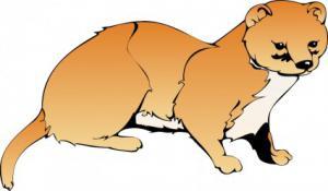 Weasel Clip Art Download.