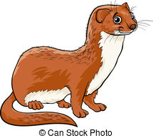 Weasel Illustrations and Clip Art. 366 Weasel royalty free.