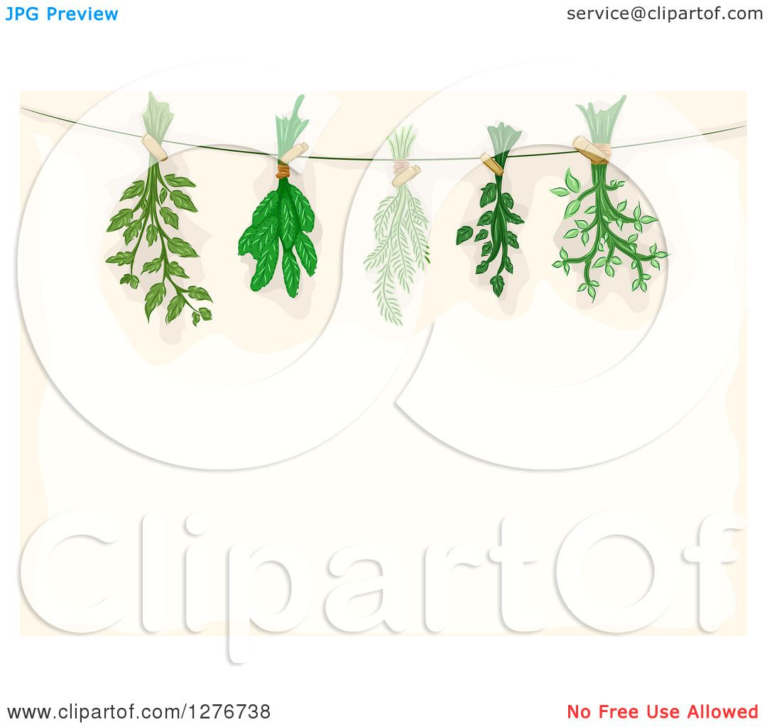 Clipart of a Border of Herbs Being Hung to Dry over Beige Text.