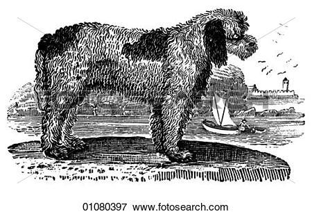 Otter Illustrations and Stock Art. 45 otter illustration graphics.