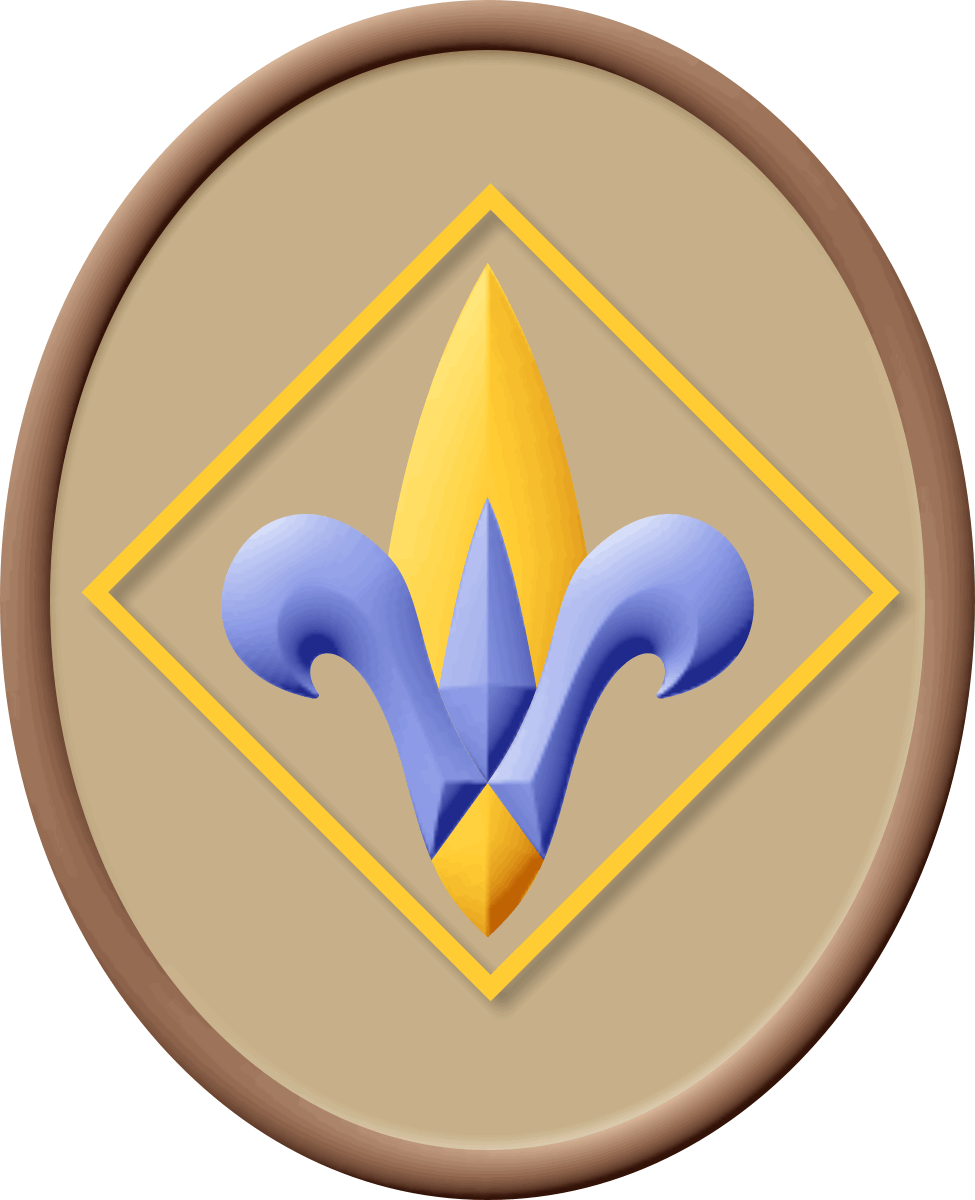 Pin on Boy and Cub Scouts!.