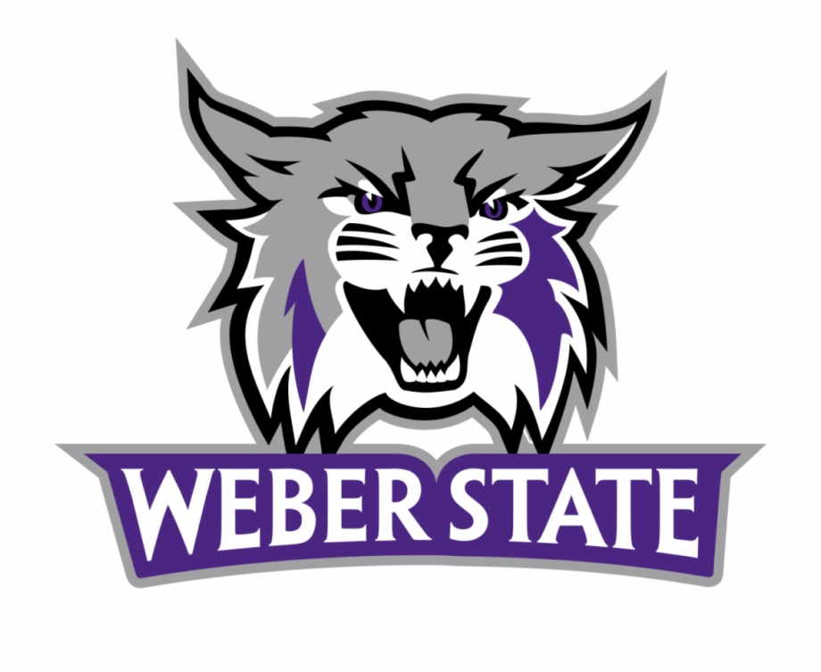 10 Weber State Wildcats Show Their Skills At Pro Day.