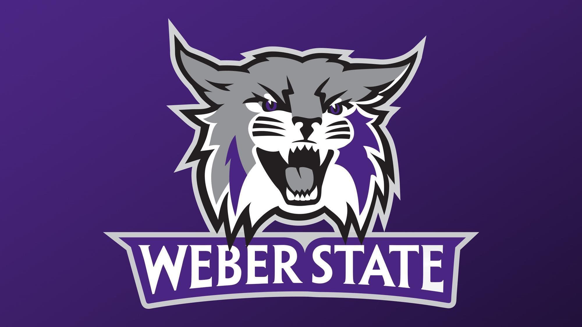 Weber state logo download.