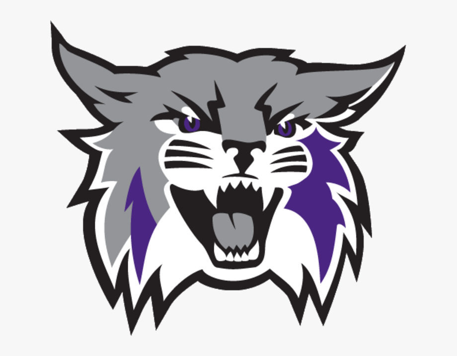 The Weber State Wildcats.