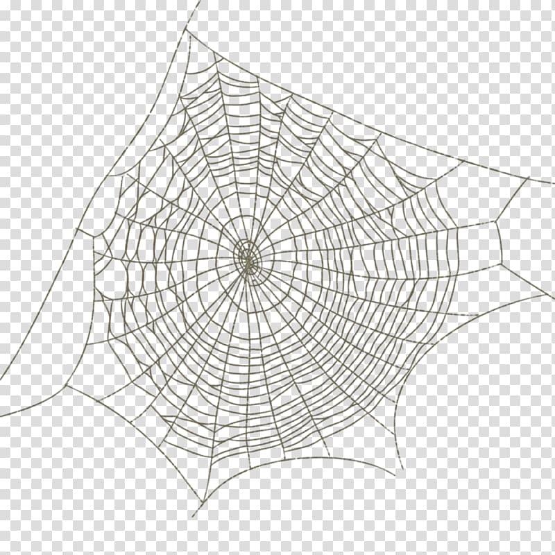 Spiderweb illustration, Spider web Drawing, Spider web.