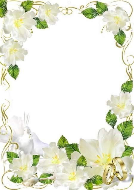PSD template for design of wedding photo album. Transparent.