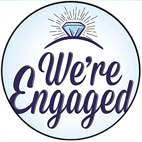 Amazon.com: Short Plush Round Rugs Engagement Party We are.
