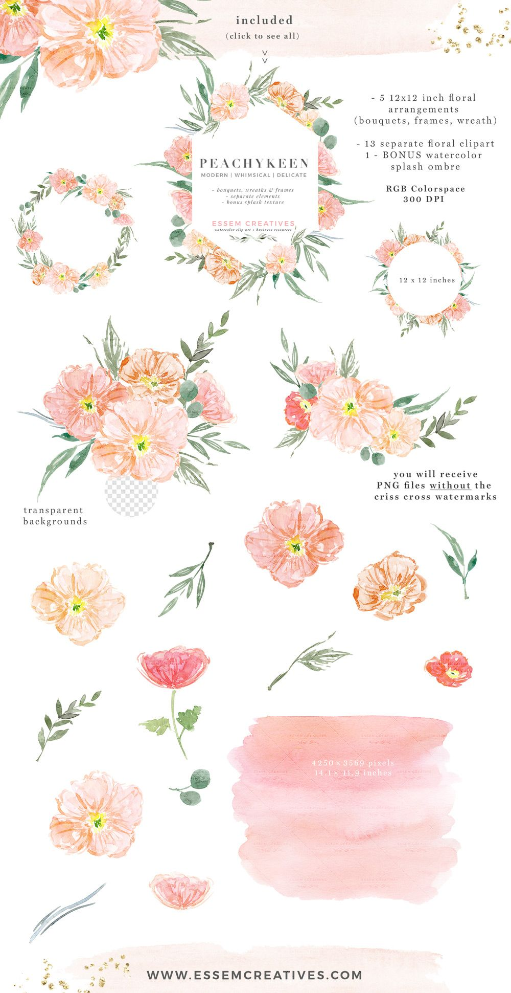Blush Pink Watercolor Flowers Clipart, Poppies Blush and.