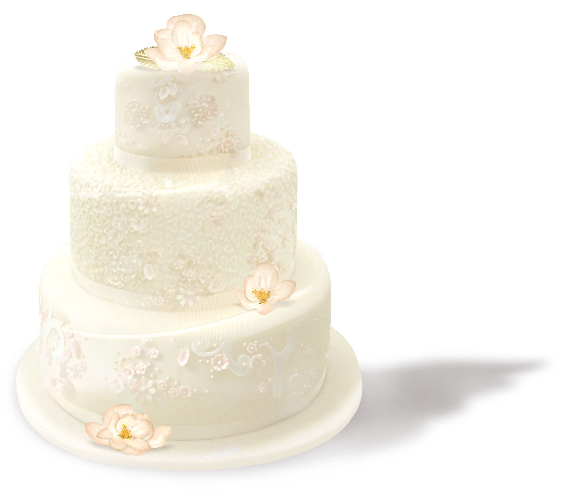 Wedding Cake PNG Picture.