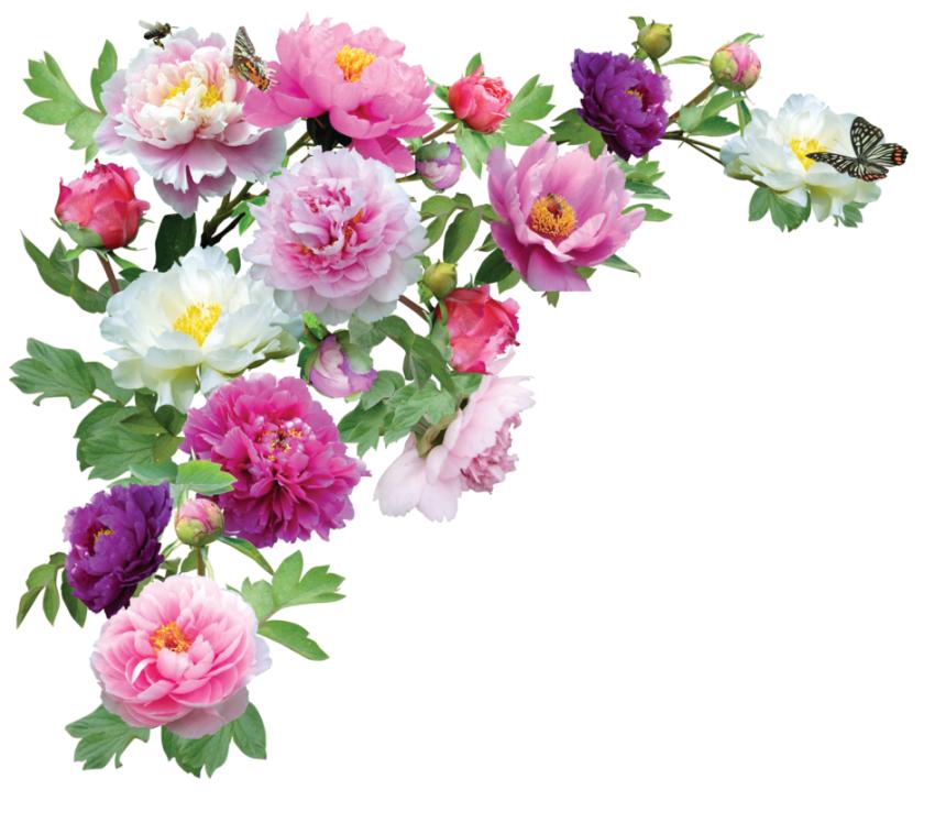 Wedding Flower PNG HD Decoration (12).