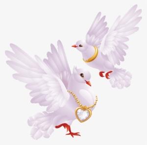 Wedding Dove PNG & Download Transparent Wedding Dove PNG.