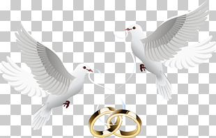 Wedding invitation , Dove inlay ring, two white doves.