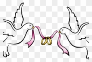 Free PNG Wedding Doves Clipart Clip Art Download.