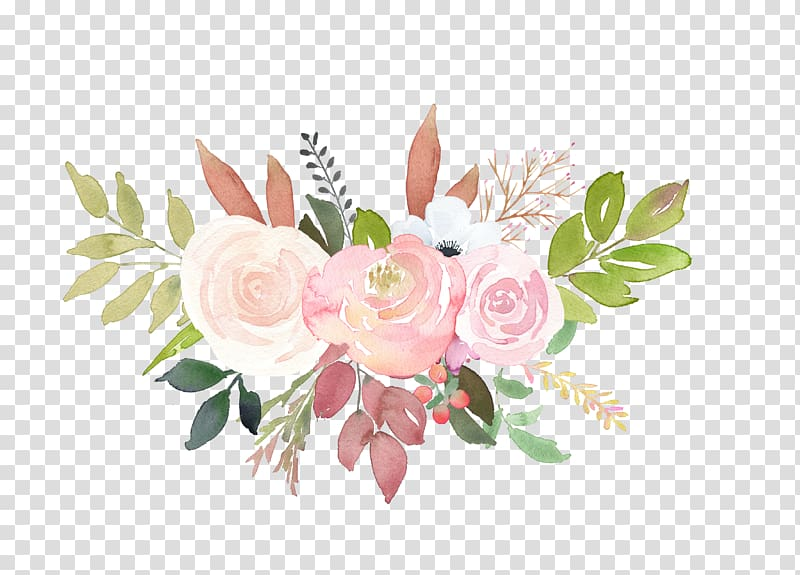 Pink and white petaled flower illustration, Garden roses.