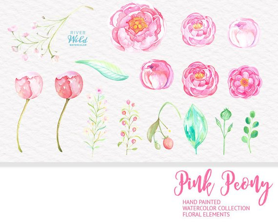 Pink Peony Watercolor Clipart, Peonies Flowers Clipart Set.