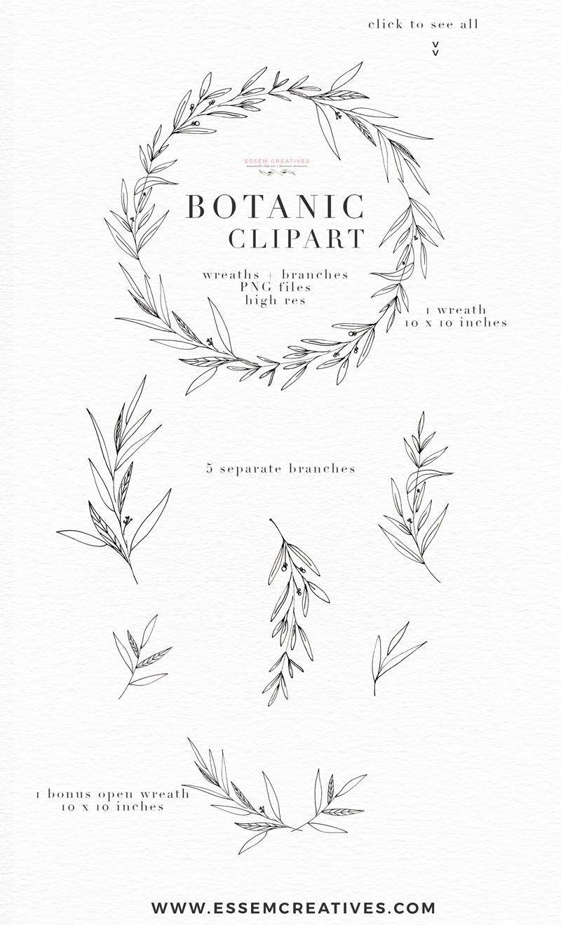 Botanical Clipart, Botanical Print, Greenery Eucalyptus Olive Art.