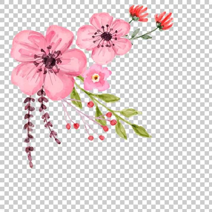 Wedding Flower PNG Image Free Download searchpng.com.