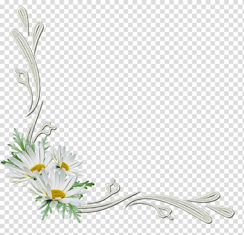 Flowers corners, white daisy frame art transparent.