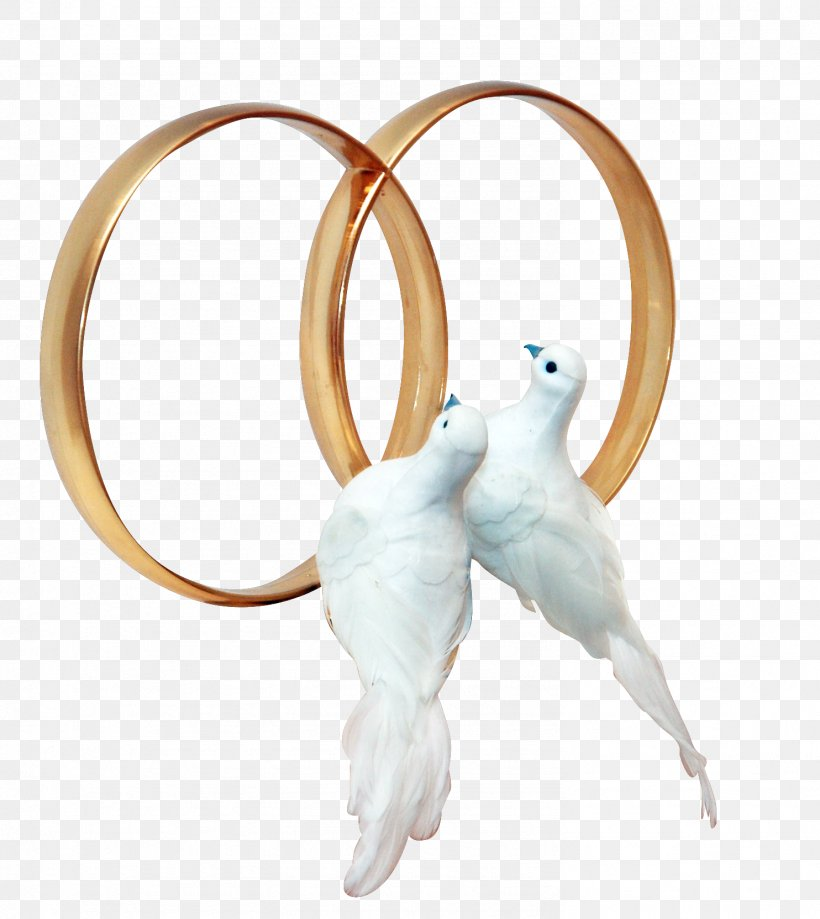 Pigeons And Doves Wedding Ring Clip Art, PNG, 1484x1664px.