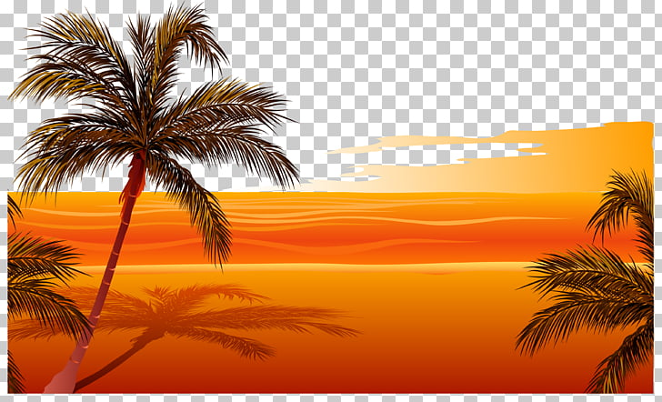 Beach Sunset Drawing , sunset beach, desert illustration PNG.
