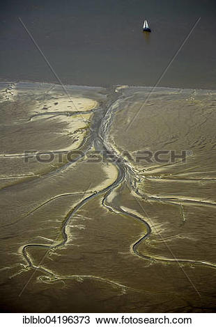 Stock Photo of Tidal creeks at low tide on Halbkalbsand island in.