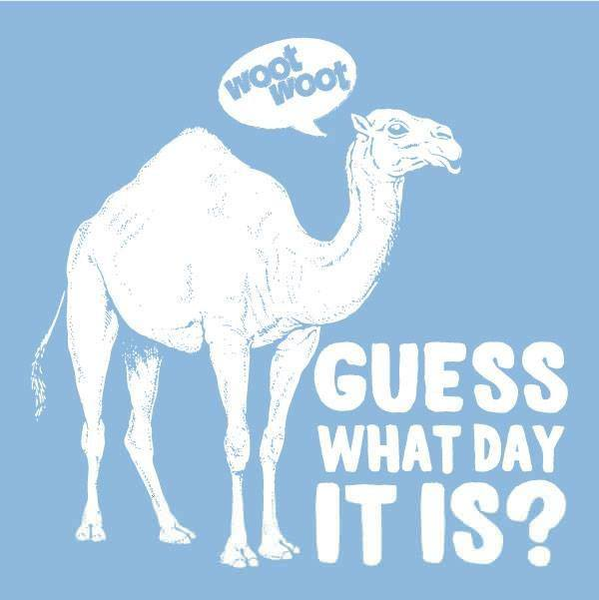 Happy Hump Day Camel Clipart.