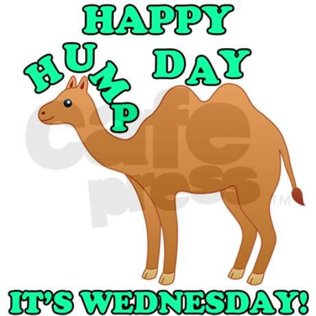 Hump Day Clipart Inspirational Happy Hump Day is Wednesday camel.