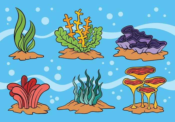 Sea Weed Vector Icons.