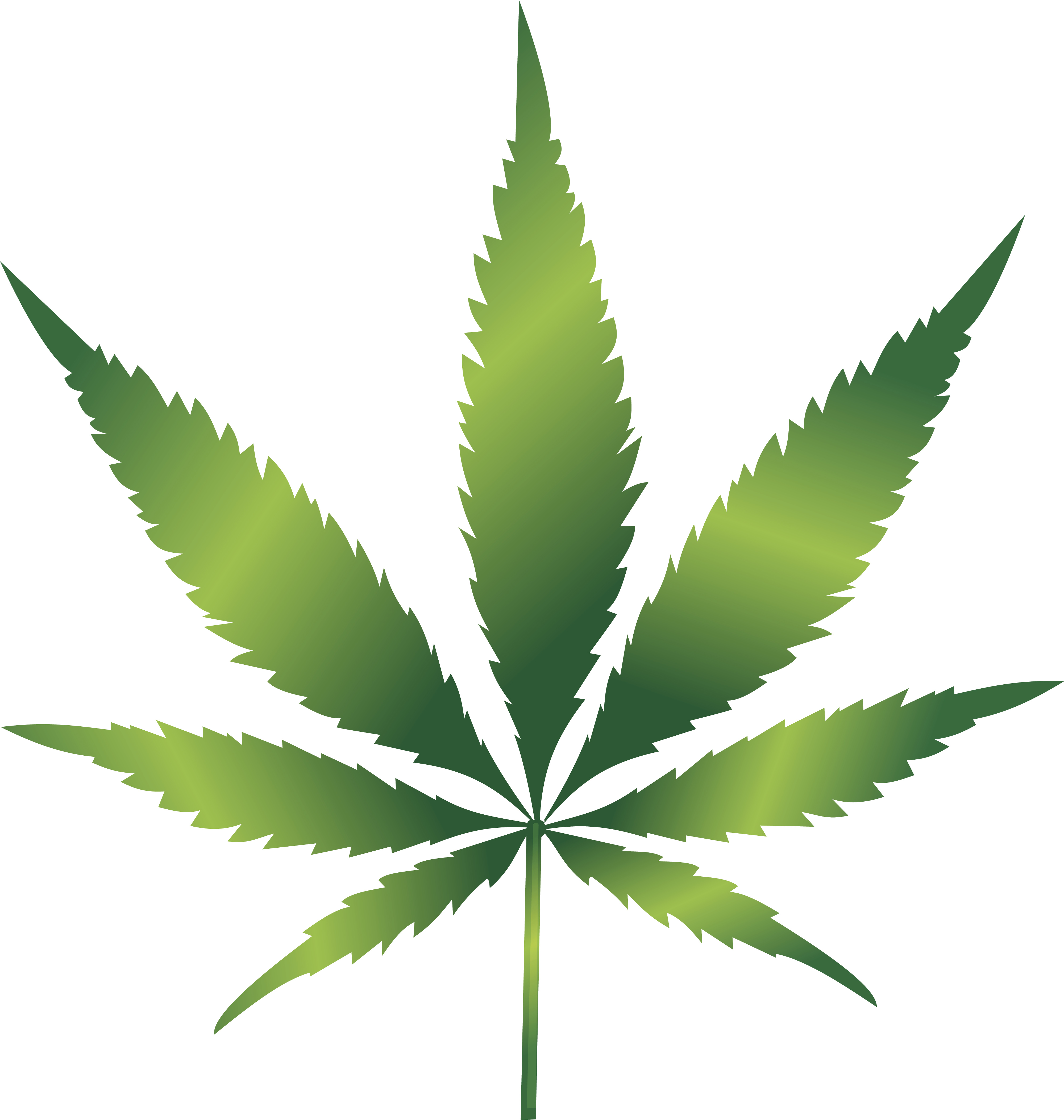 537 Weed free clipart.