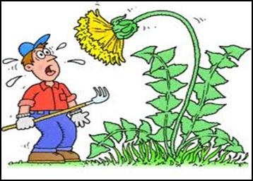 Herbicides Weed Control Clip Art.