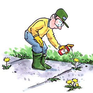 Will this weed killer hurt my grass?.
