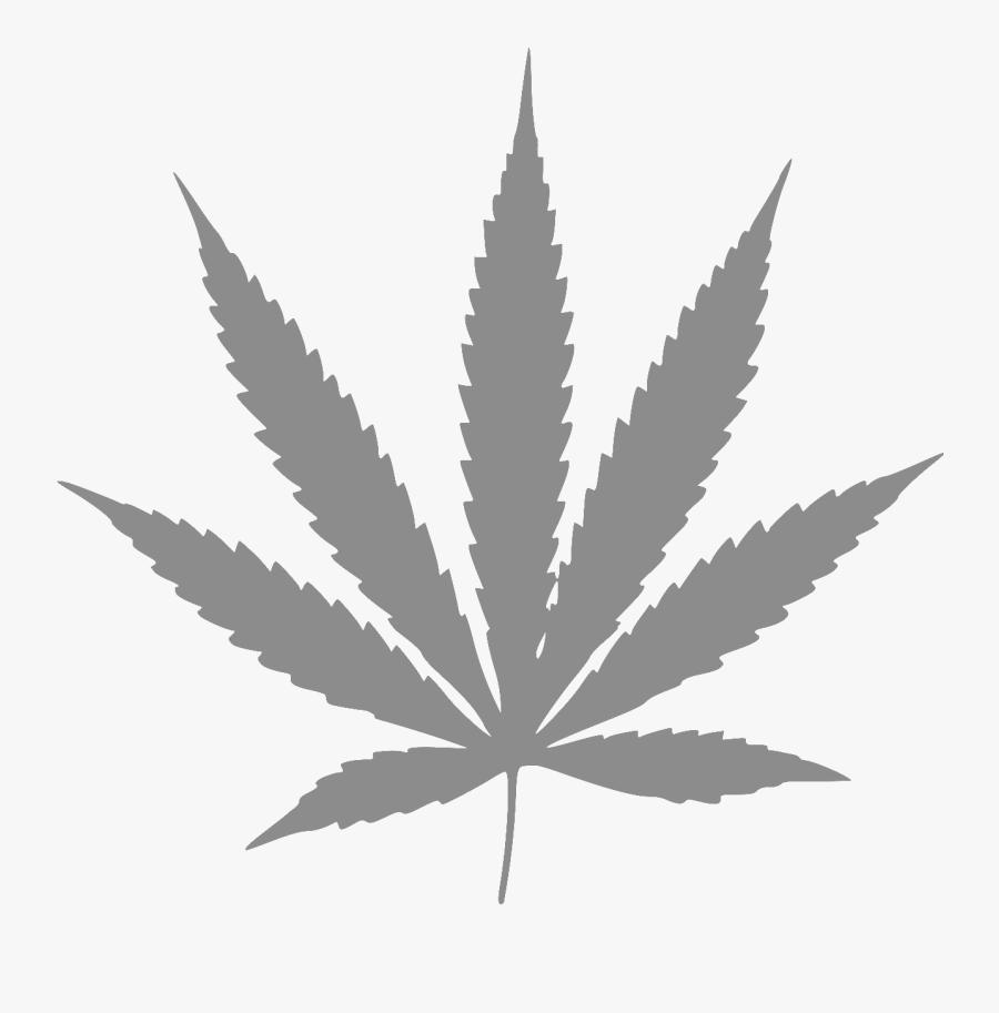 1277 × 1362 In Leaf.