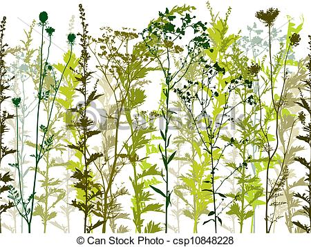 Vector Illustration of Natural wild plants and weeds..