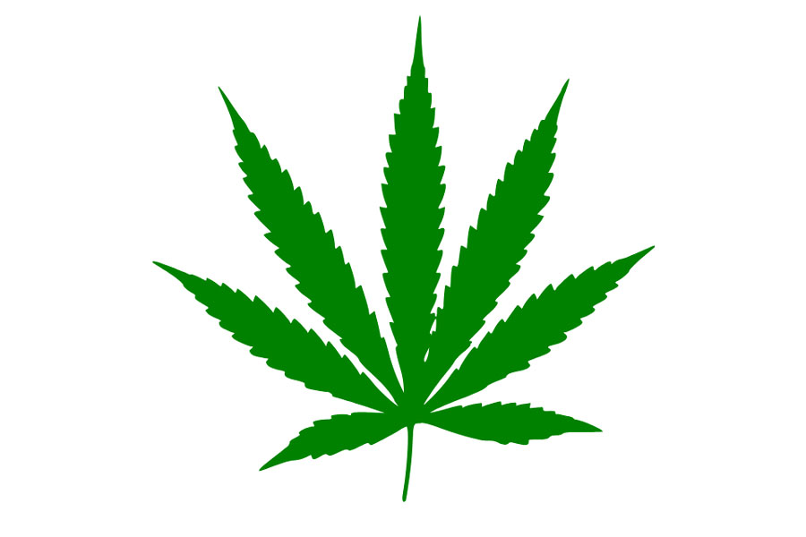 9 Best Examples of Cannabis Branding — ebaqdesign.