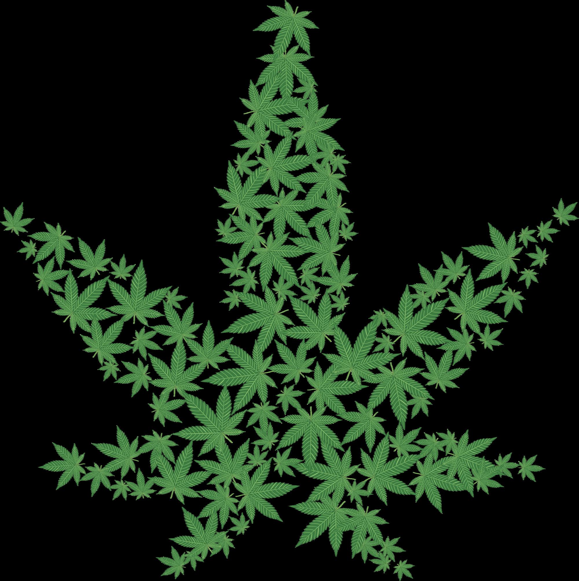 Weed Leaf Transparent PNG.