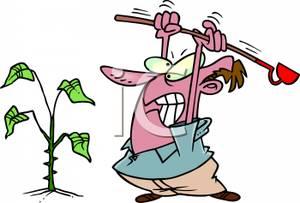 Cartoon Gardener Attacking A Weed.